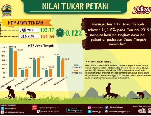 Peningkatan NTP Jawa Tengah sebesar 0,12% pada Januari 2019