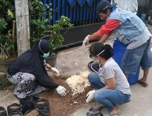 Sampah Diapers dan Pembalut Wanita pun Bisa Jadi Media Tanam
